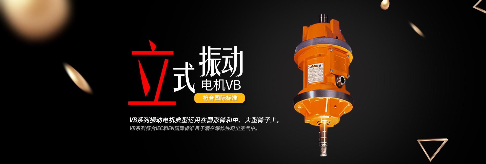 VB系列立式振动电机