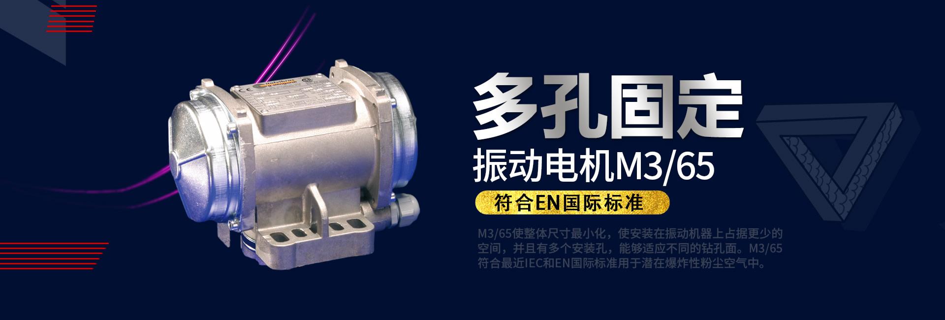 多孔固定振动电机M3/65
