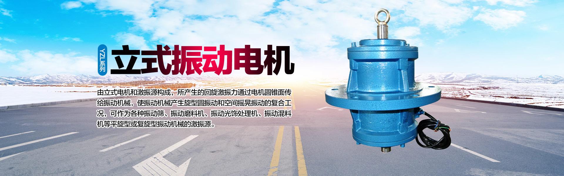 上海上振YZL系列立式振动电机